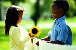 向日葵的情谊