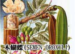 木蝴蝶(SEMEN OROXYLI)
